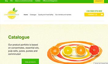 Web Corporativa LemonConcentrate. Plataforma Wordpress responsive