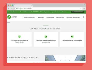 diseño web EMFSCM